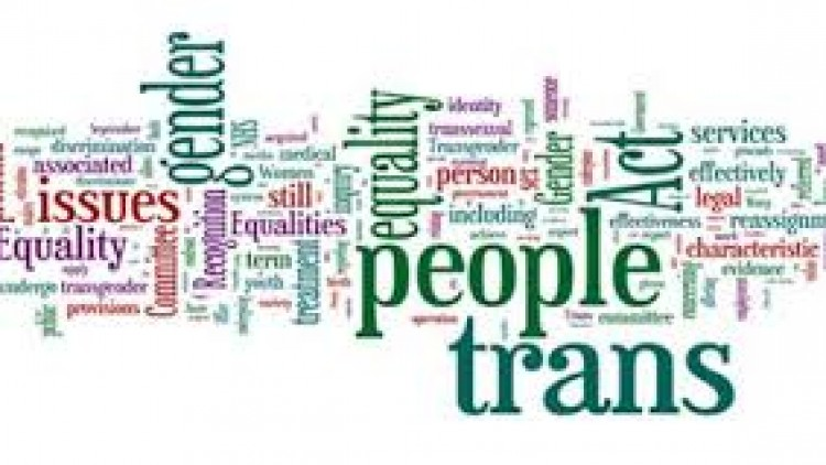The Government Response to the Women and Equalities Committee Report on Transgender Equality